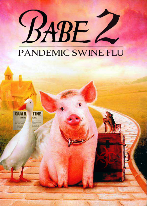 Swine Flu Essay